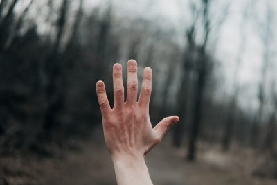 A raised hand with woodland background - Photo by Andrik Langfield on Unsplash