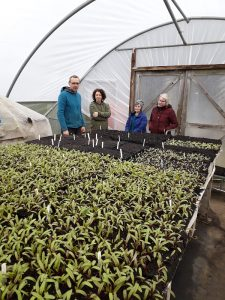 A group from Alston Moor Greenprint gets a tour inside the polytunnel at Growing Well