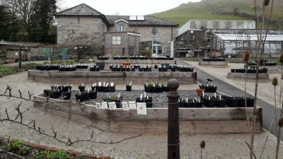 The Coach House Cafe and kitchen garden Ulverston